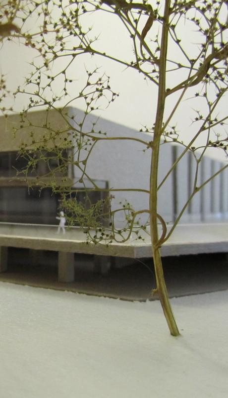 concrete trophy modell